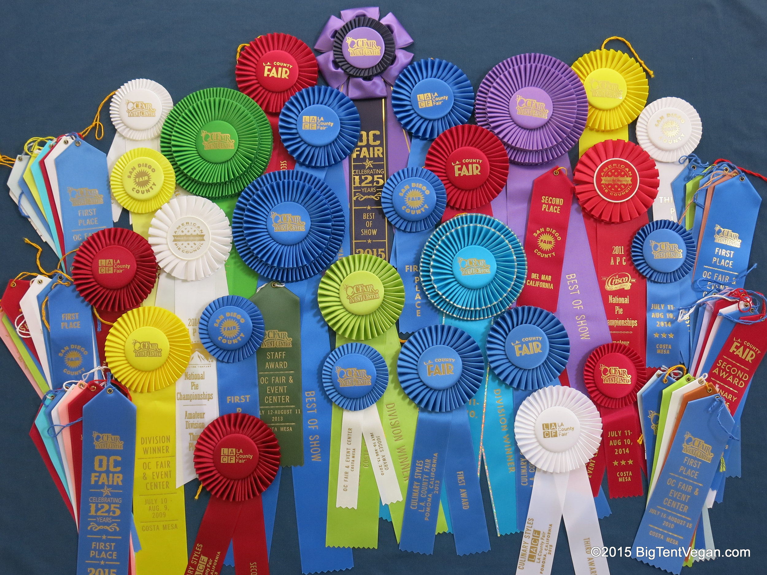 Some  of Susan's ribbons (just through 2015!)