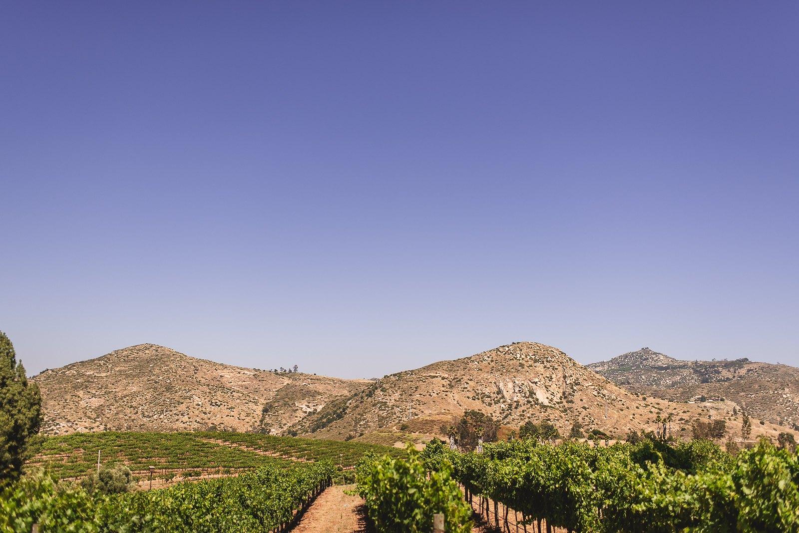 orfila-winery-wedding-photos-t-n-27.jpg
