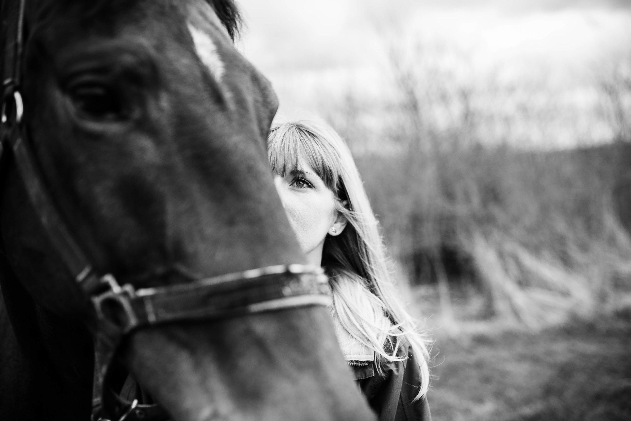 HORSE FARM FAMILY DOG PHOTOSHOOT 00003.JPG