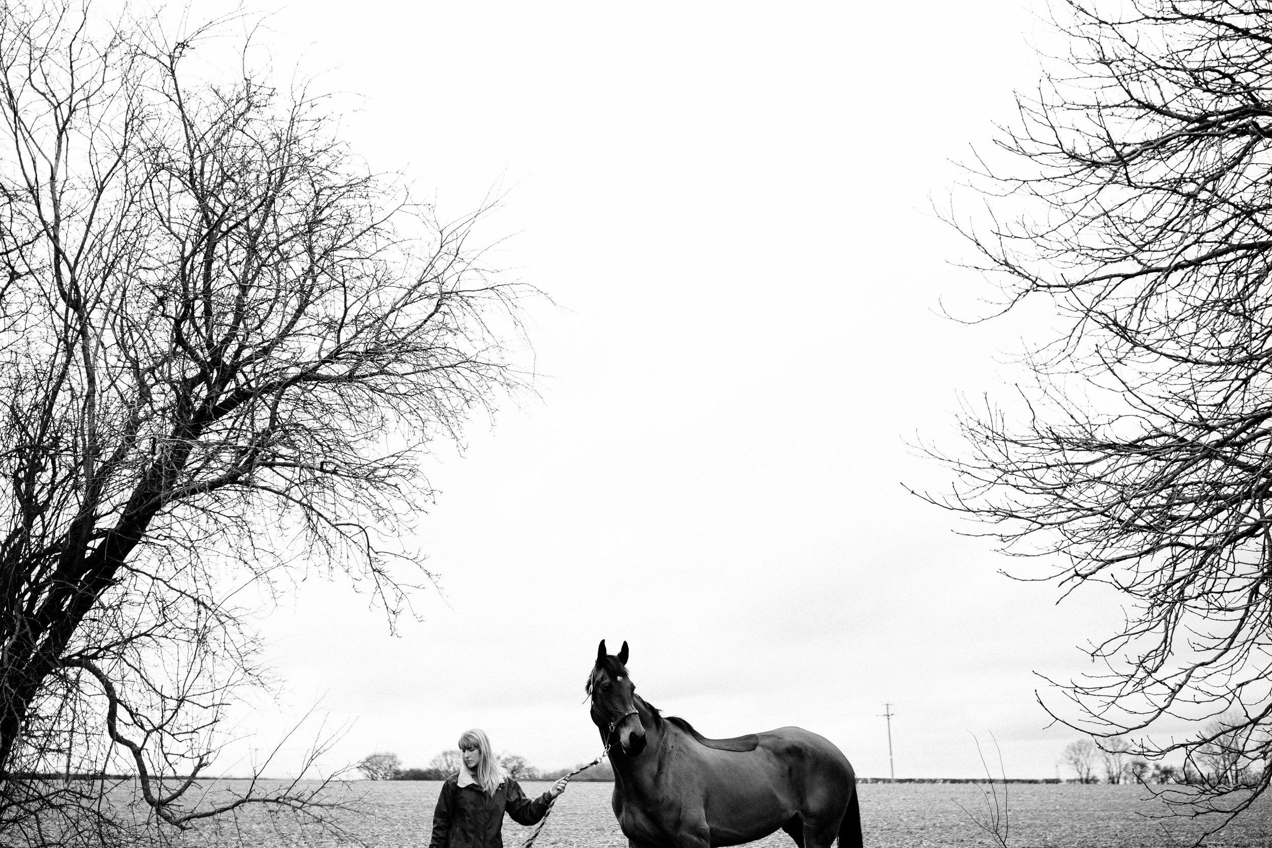 HORSE FARM FAMILY DOG PHOTOSHOOT 00001.JPG