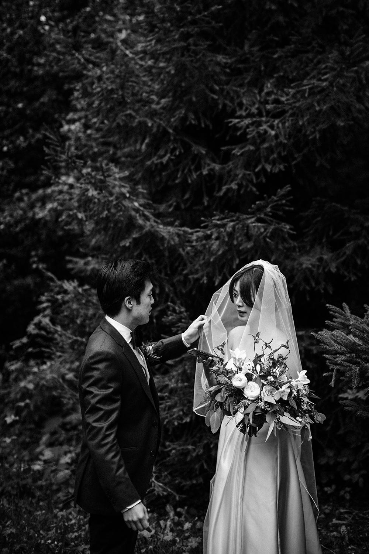 Malaysian wedding in france.jpg