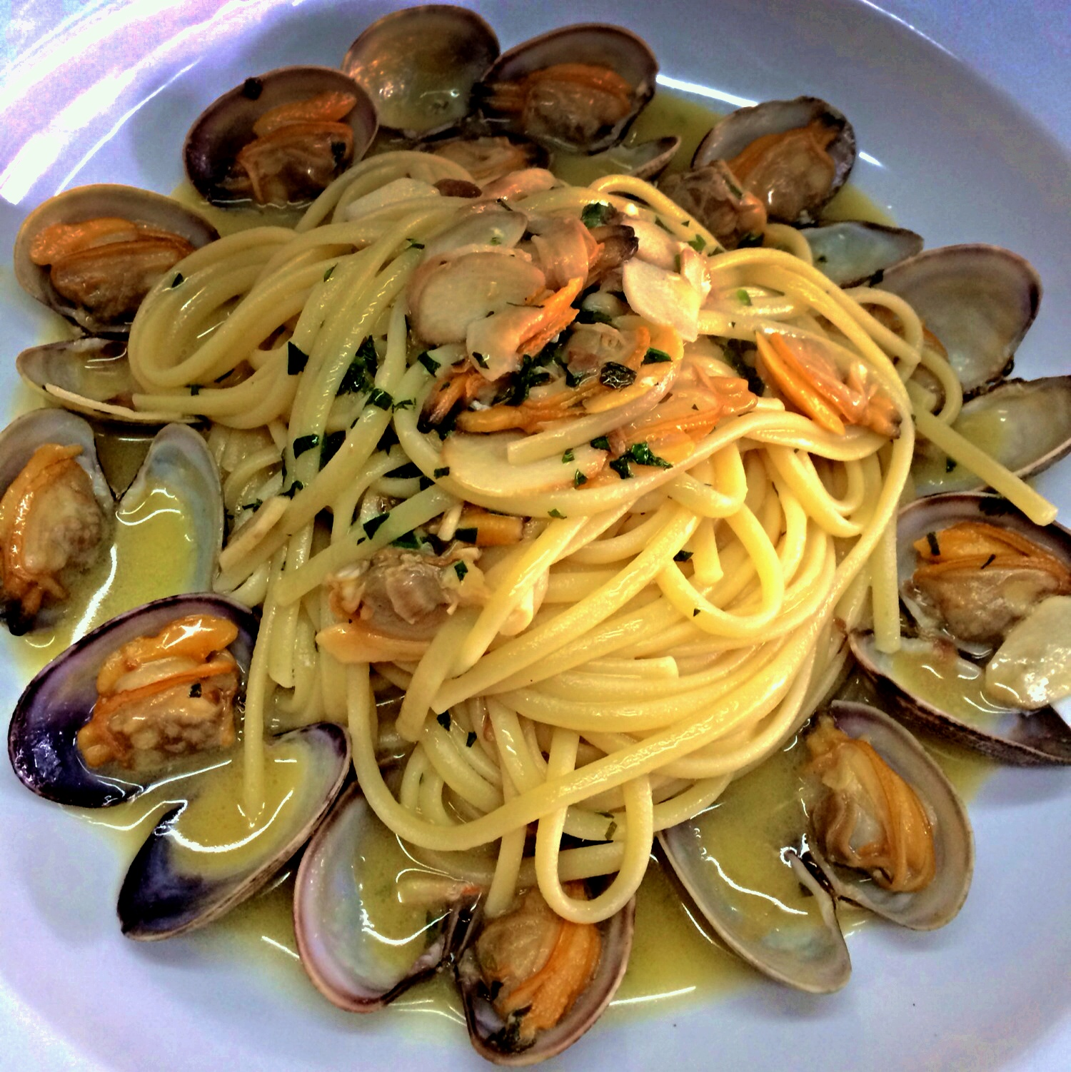 Linguine pasta with mussels