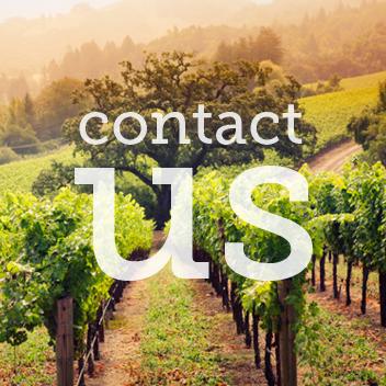 Elegant Brie-Contact Us