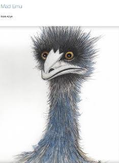 Mad Emu Kaye McCrae Watercolour.jpg