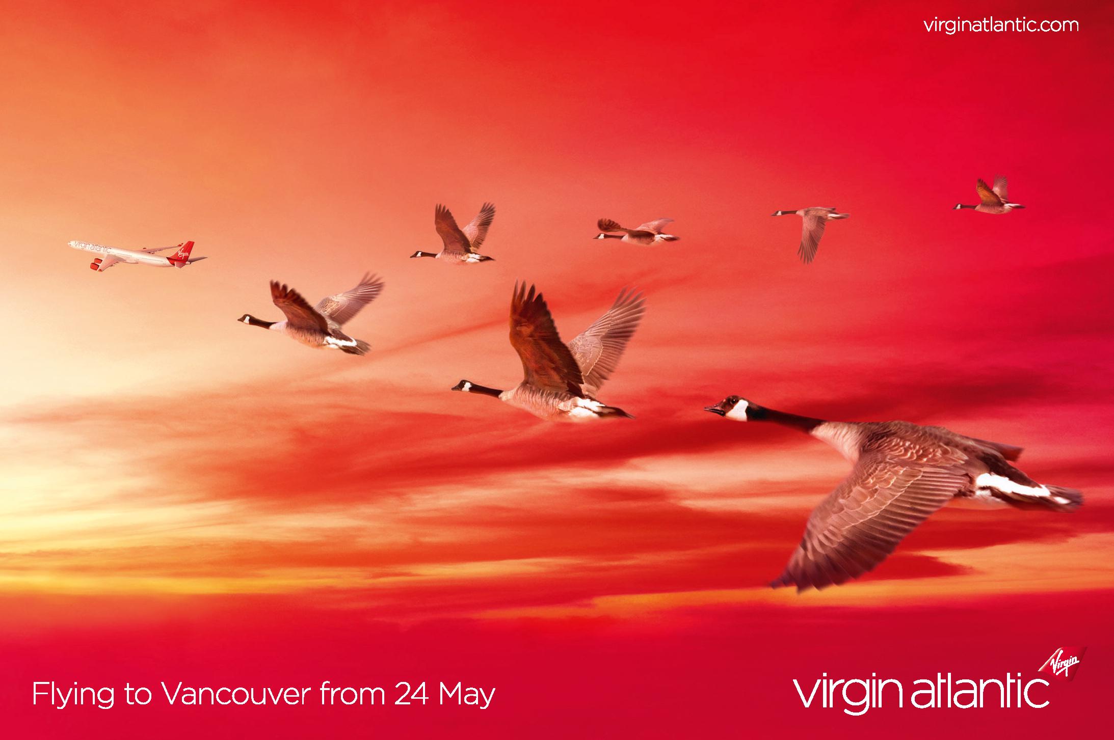 Virgin Geese.png