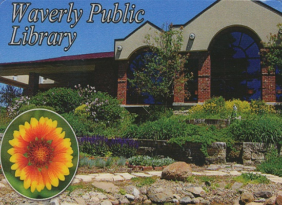 The public library is such a potentially joyful place...as you can tell with the flower emphasis on its official photo.
