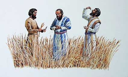 disciples eating grain.jpg