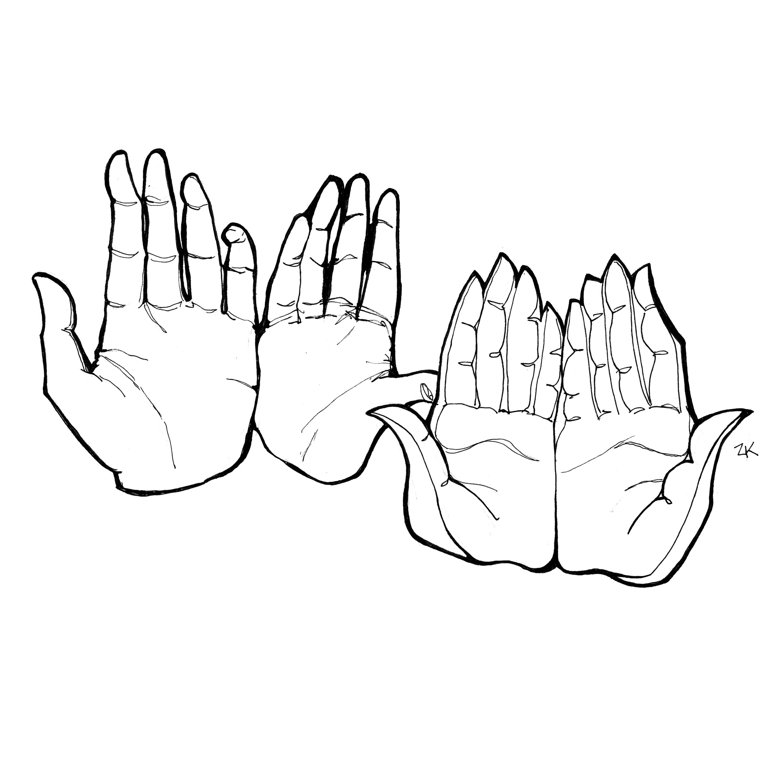 hands_5.jpg