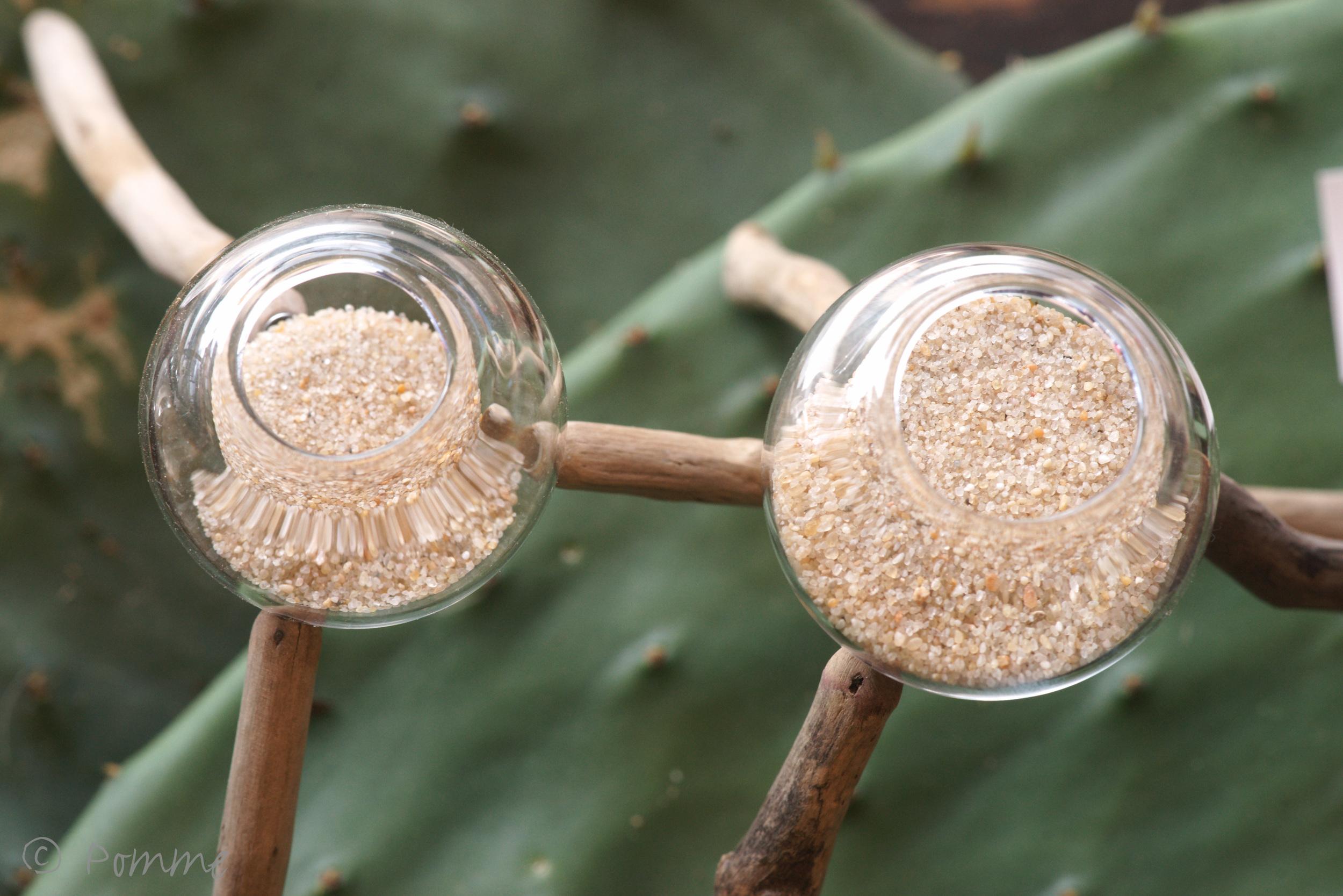 Pomme (3 of 12).jpg