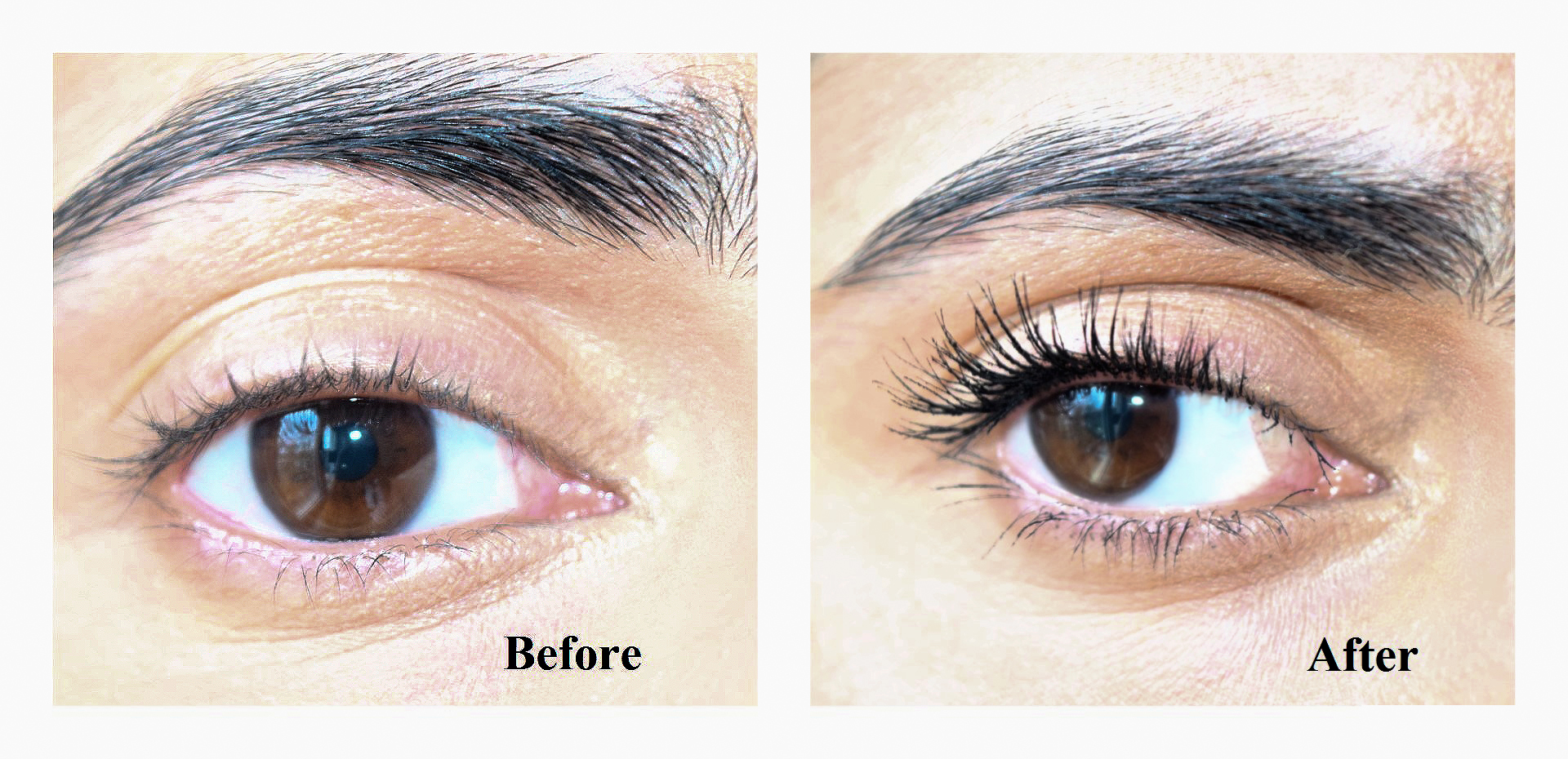 Before & After:  Limelight by Alcone Perfect Mascara $20