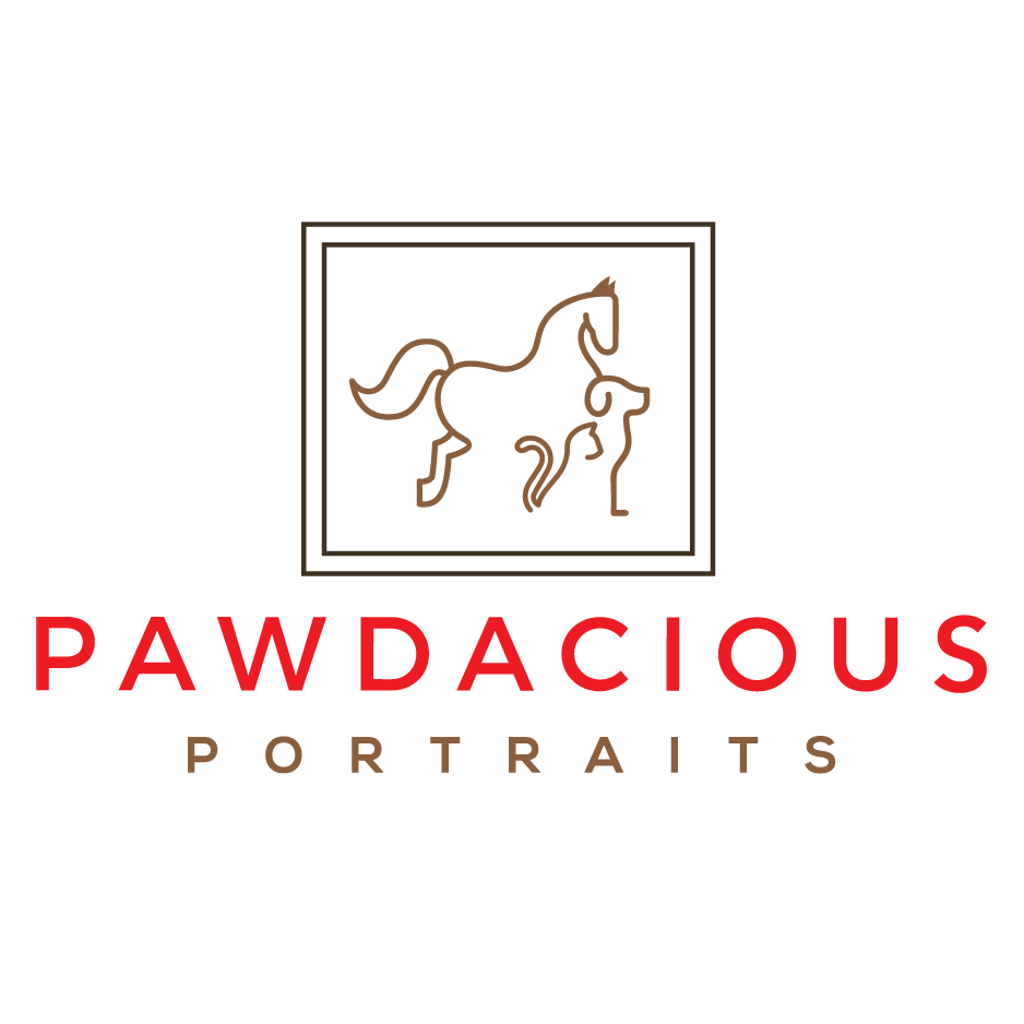 Pawdacious Portraits.png