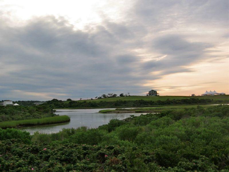 Trims Pond 2010