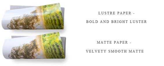 Album includes lustre paper. (Add $175.00 for matte paper)