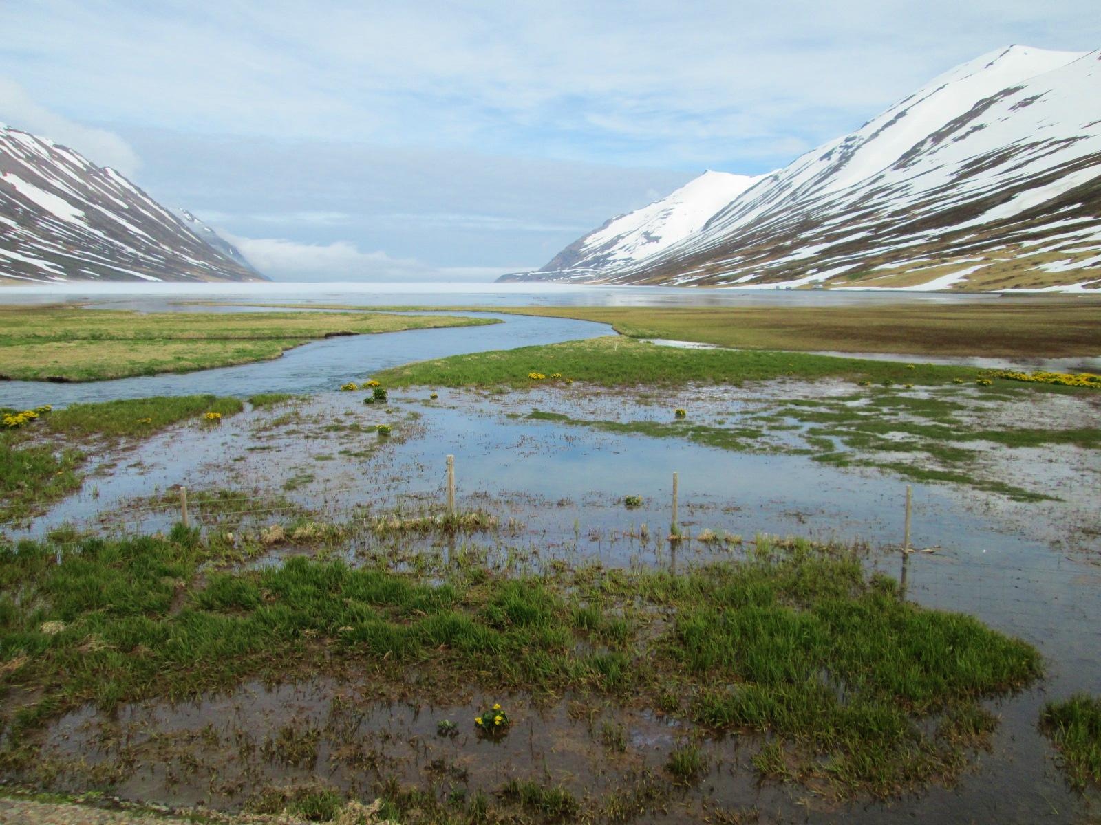 on the road to Akureyri (2).JPG