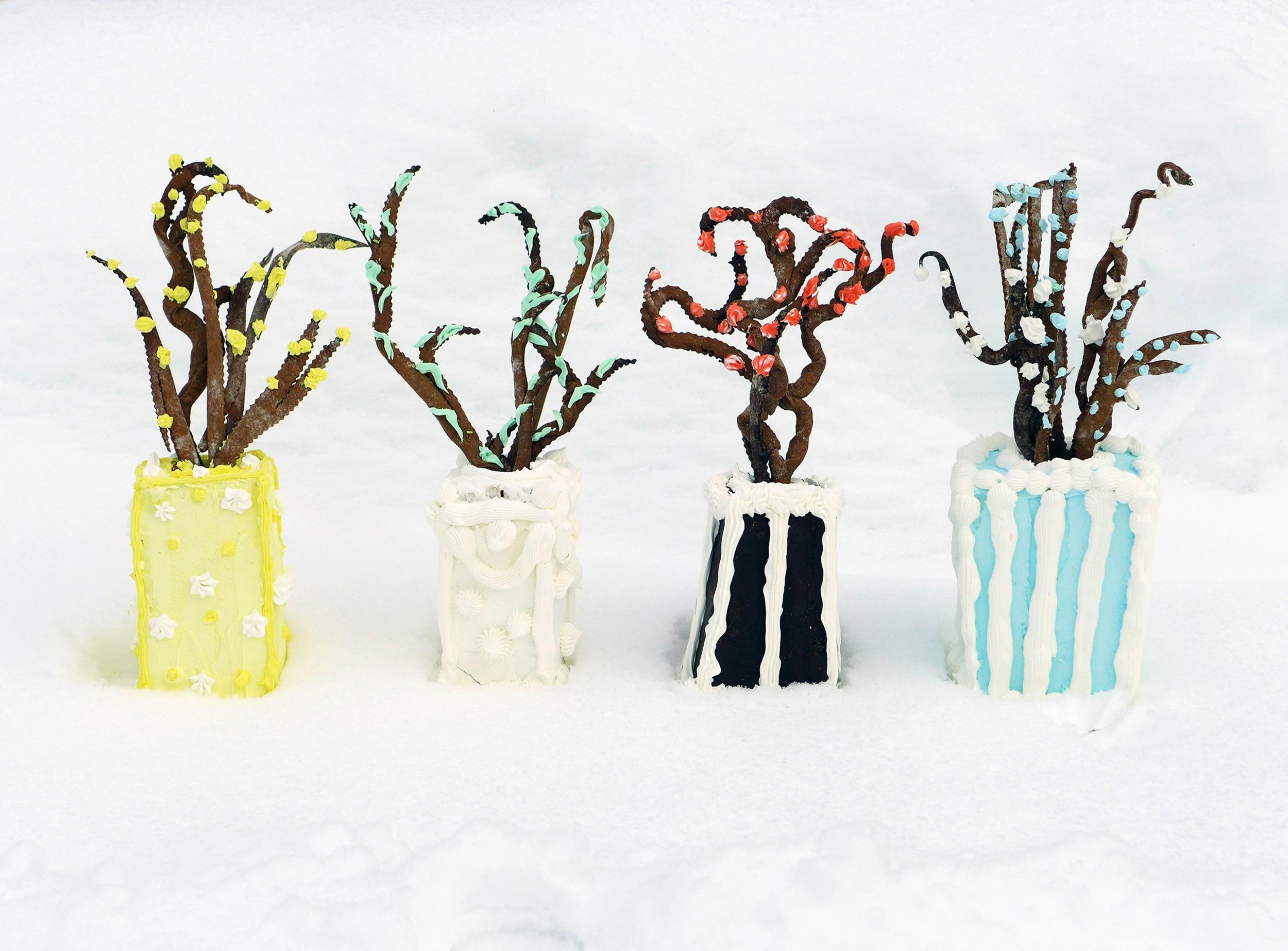 "Christa Maiwald, Winter Vase Cakes, archival pigment print, 21"" x 24"", edition 5"