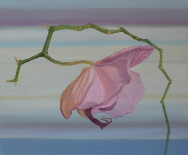 """Title: #31 Orchid Series, 2012 -2015"""" Media: Oil on Canvas Year: 2012 Dimensions: 20 x 24 inches"""