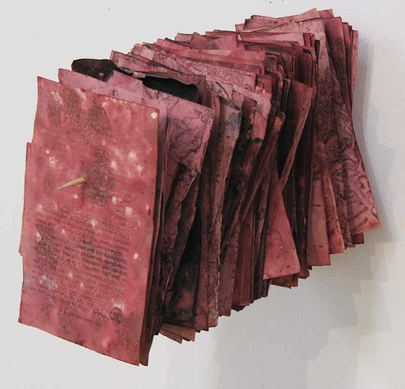 image from WORD: Florilegium, 2015, cochineal dyed book pages, skewer