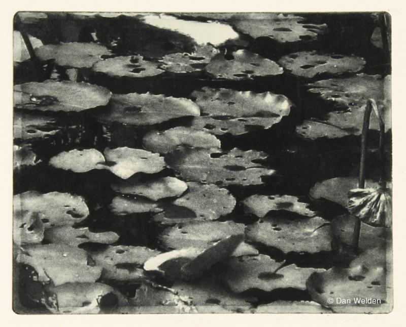 Monet's Friends by Dan Welden