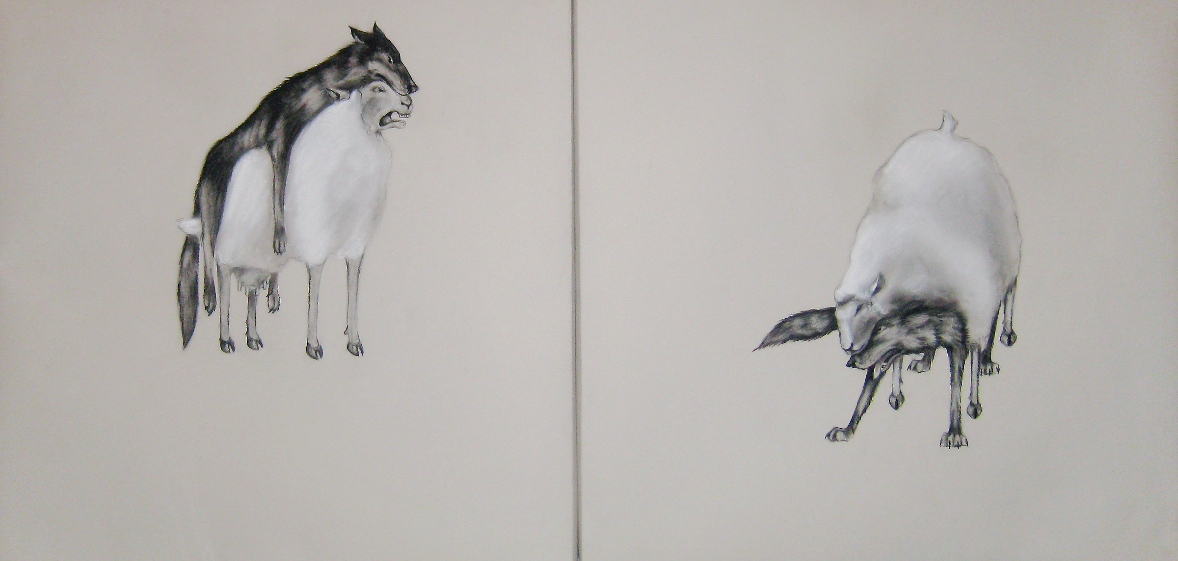 """Decoy  diptych, 2010  Charcoal on stretched paper  30x60"""""""