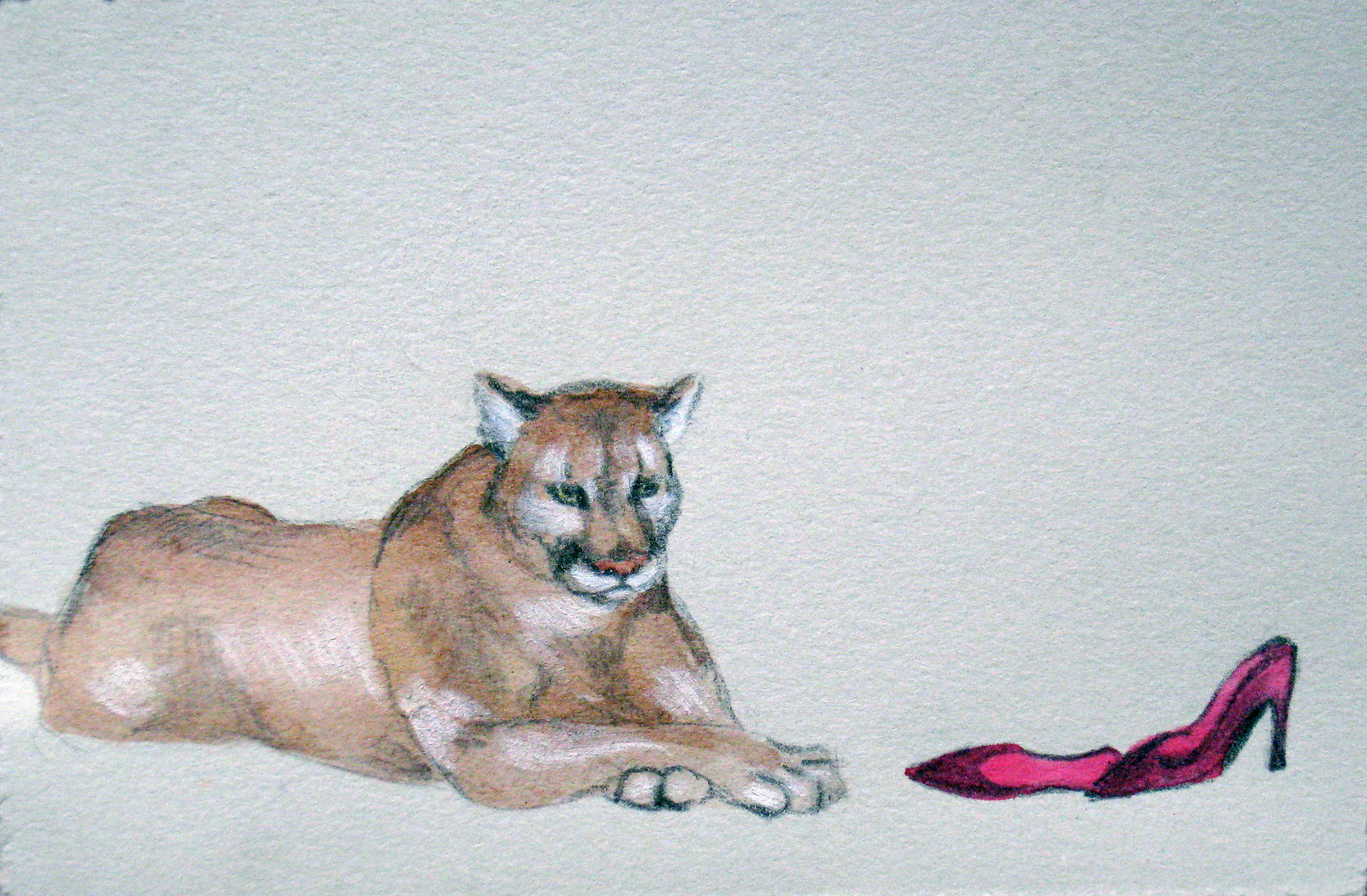 """Cougar 1, 2007  Charcoal and ink on paper  6x8"""""""