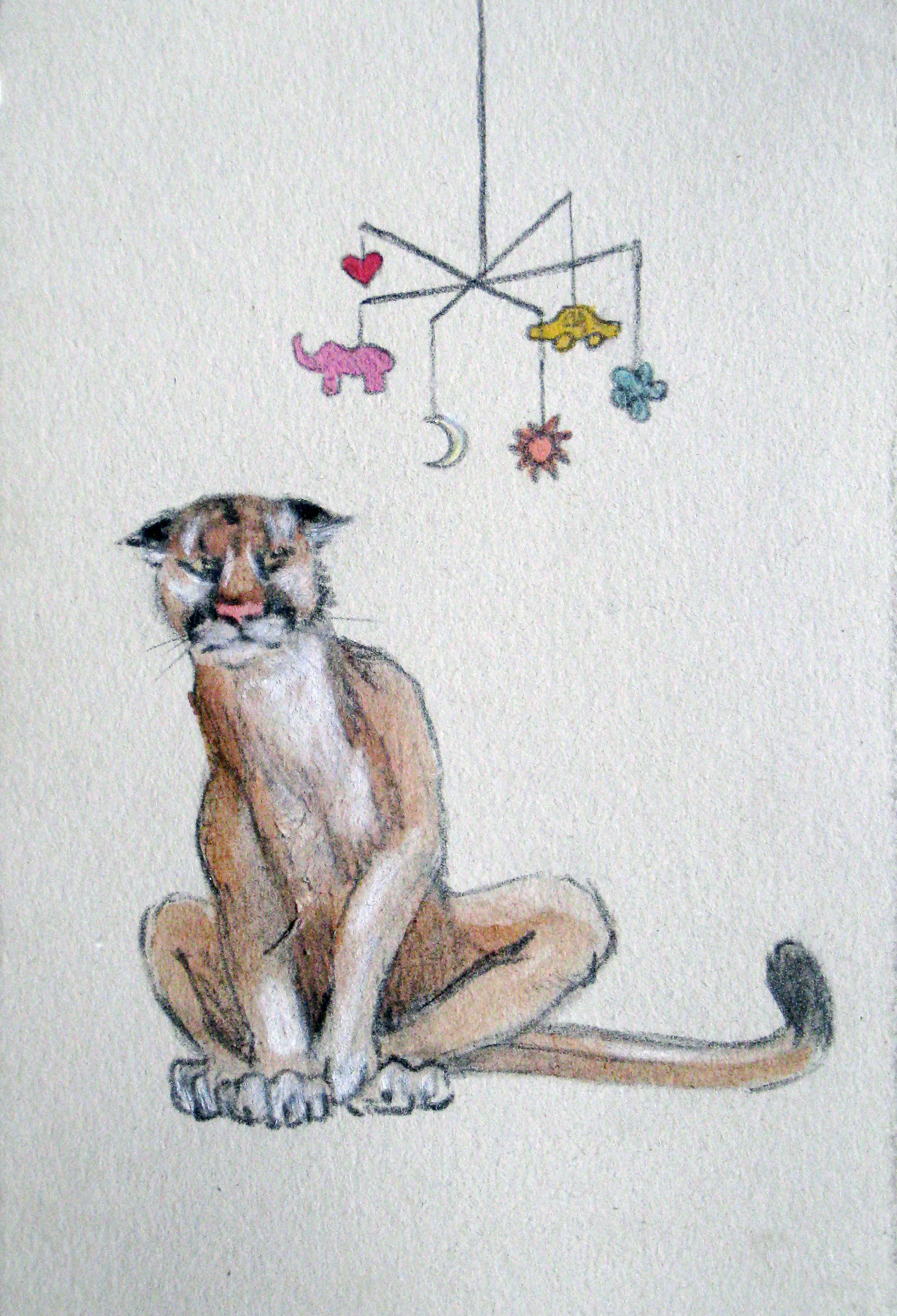 """Cougar 5,, 2007  Charcoal and ink on paper  6x8"""""""