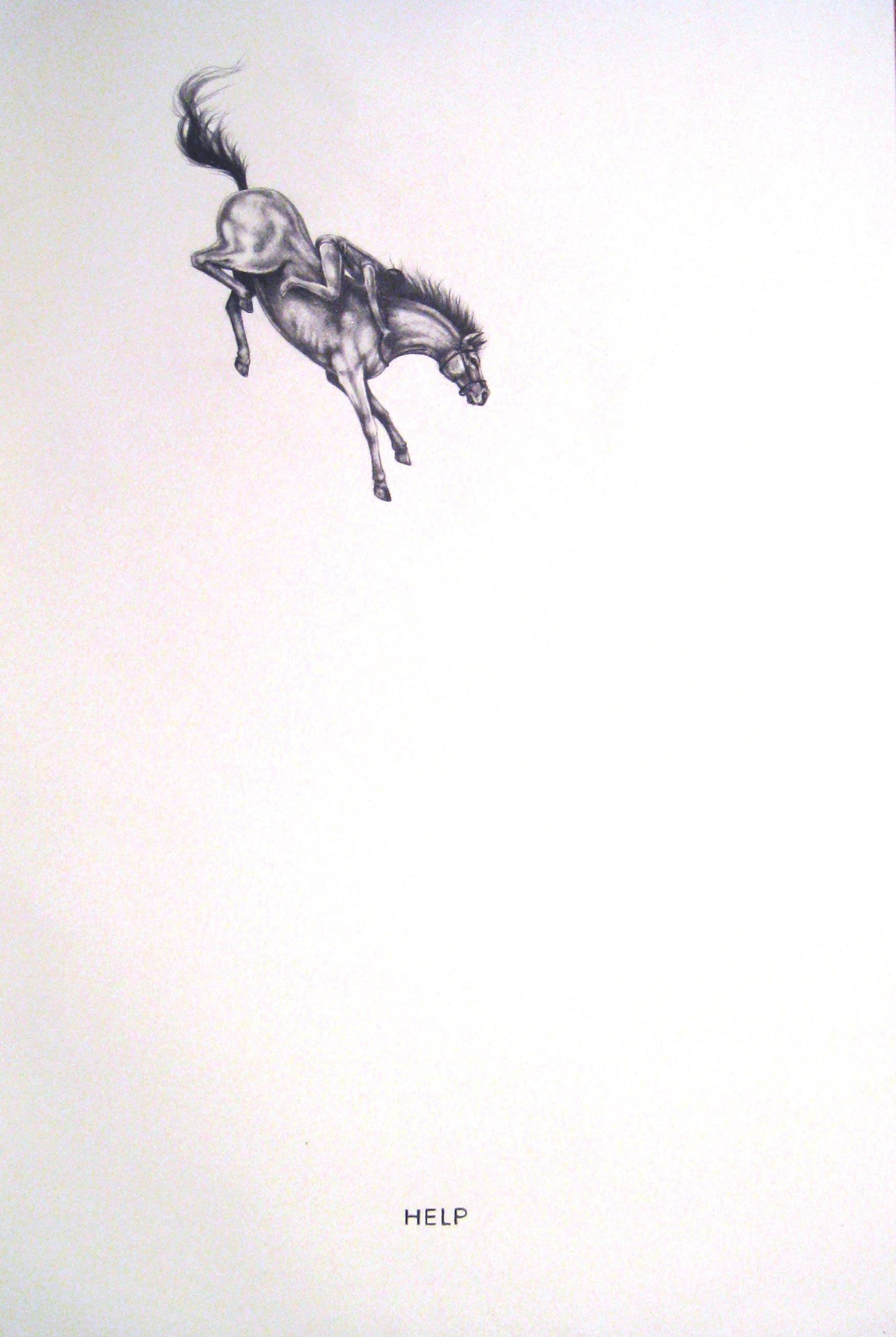 """Contingency 7(Leap), 2014  Graphite on Paper  30x44"""""""
