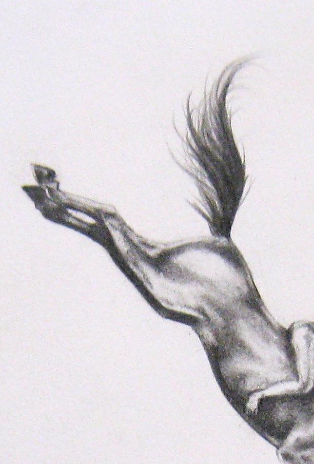 Contingency 8 (Leap), 2014  detail