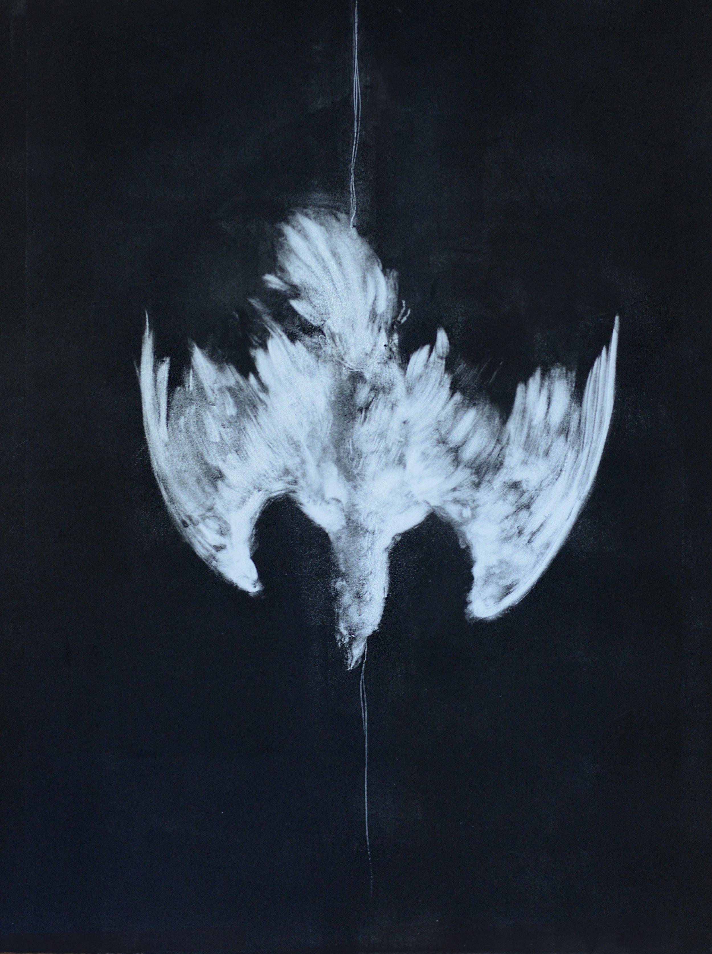 "Fugue (Pigeon), 2016  Monoprint  22x30"""