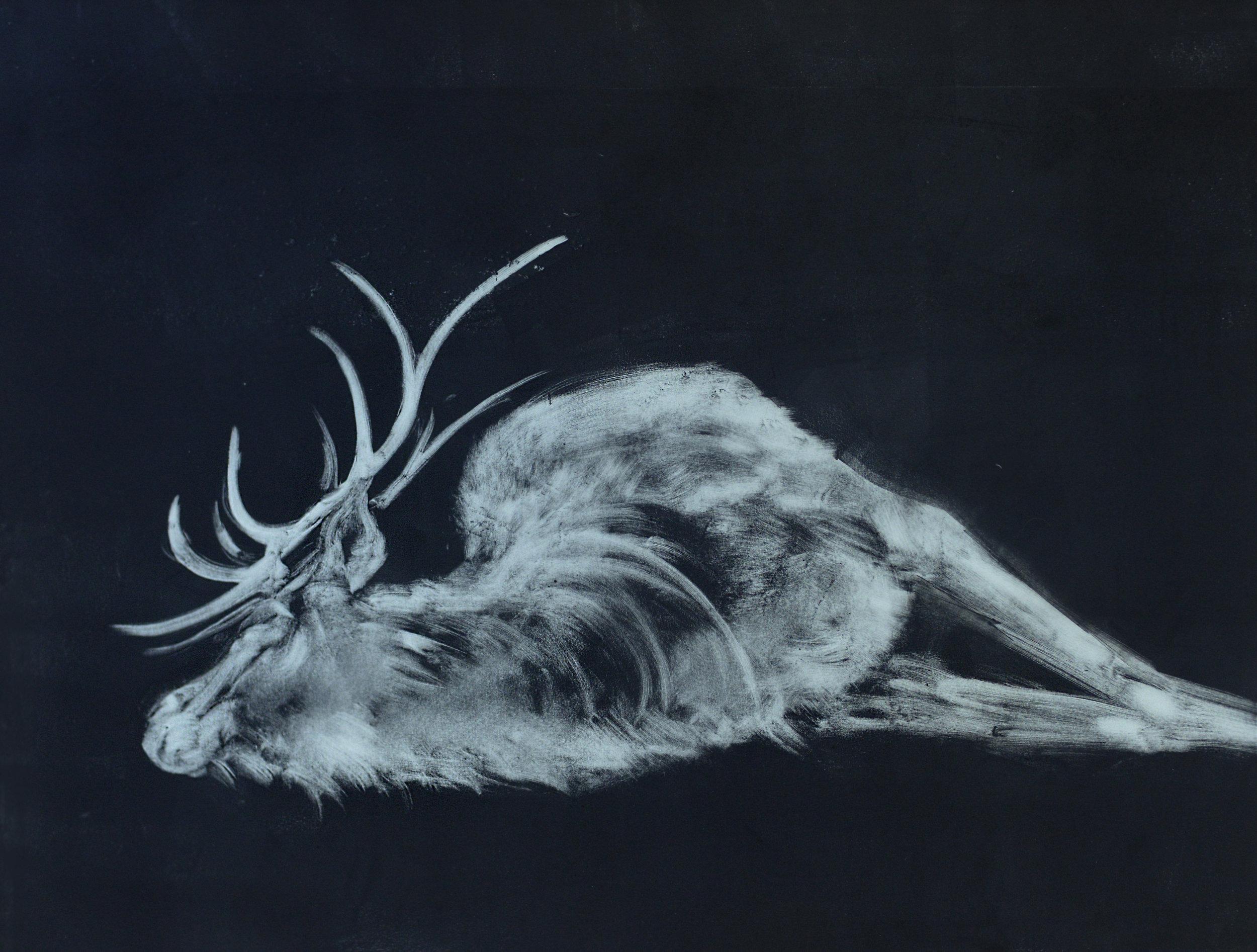 """Fugue (Elk), 2016  Monoprint  22x30"""""""