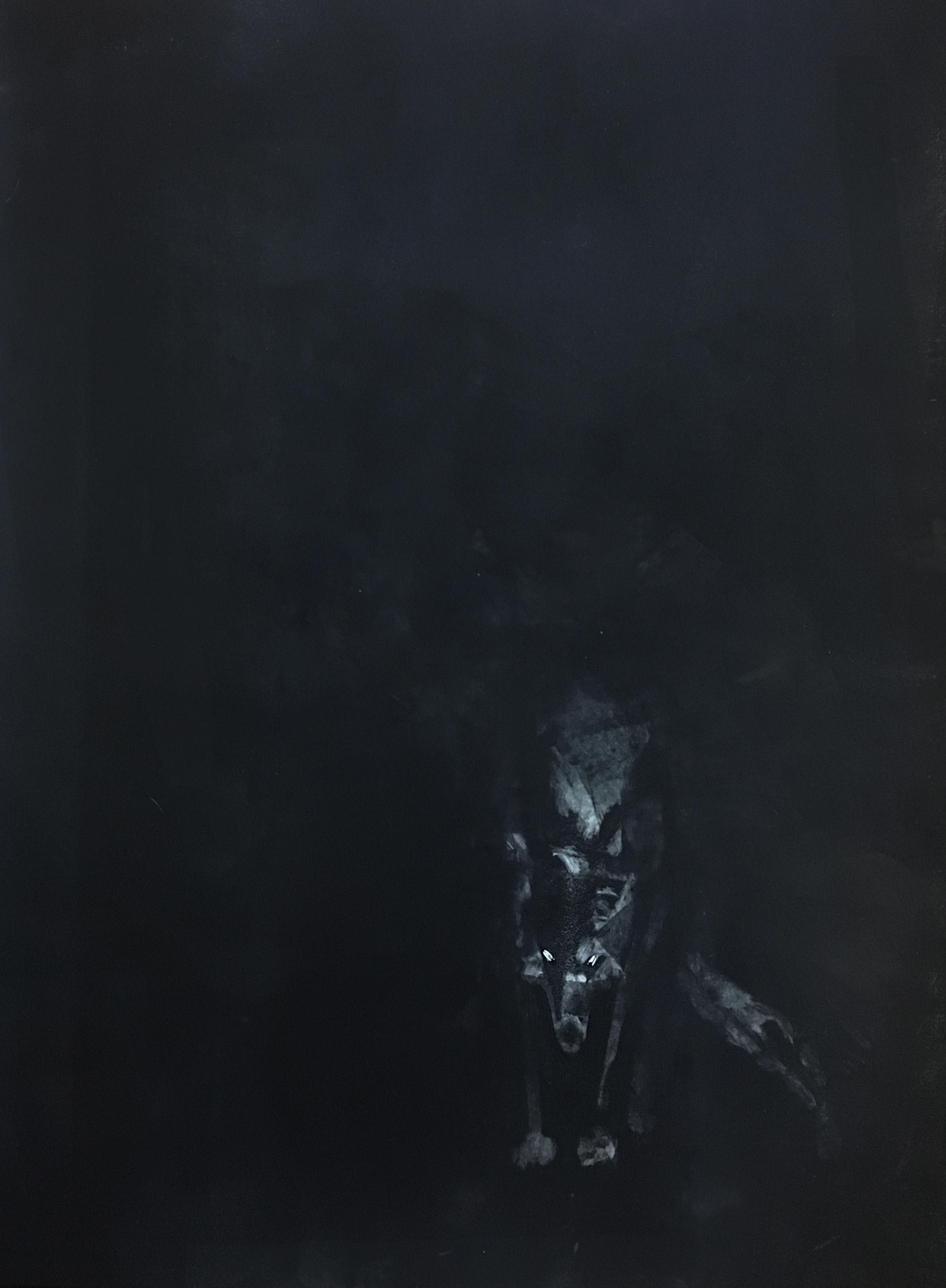 "Untitled (Ferrier), 016  Monoprint  22x30"""