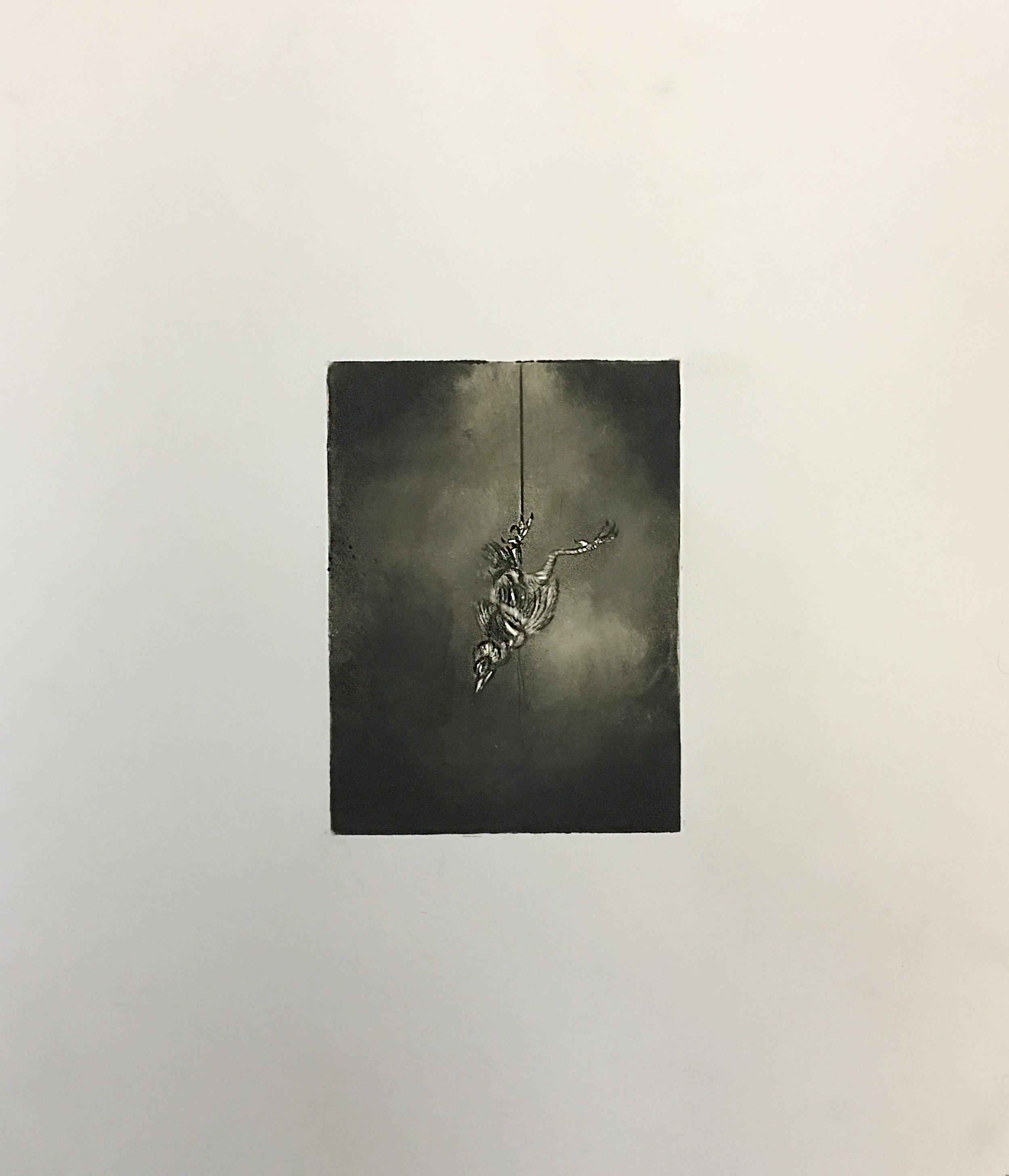 "Yellow (Sparrow), 2016   Intaglio  12x18"""