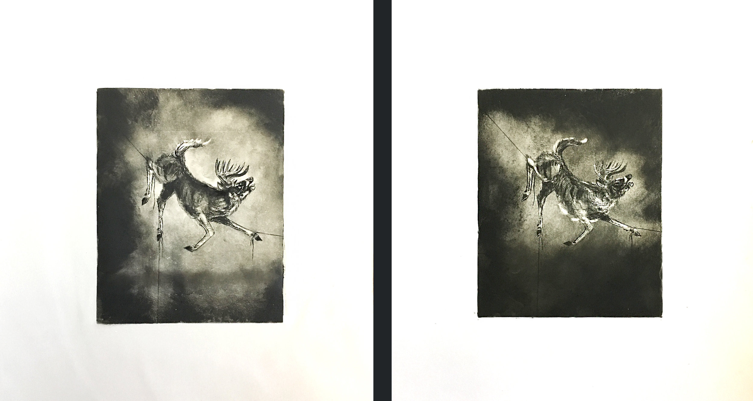 Yellow (Stag),  2016  Intaglio, edition of 2  each 12x16""