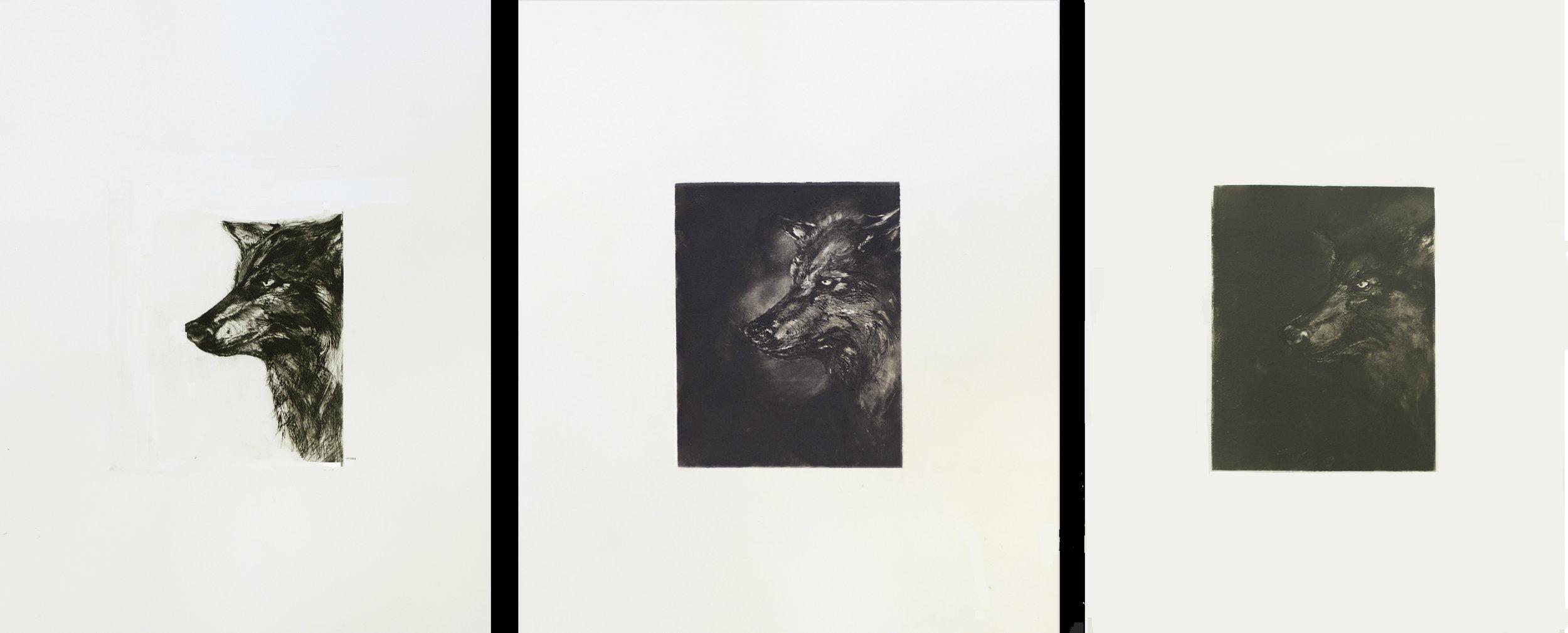 "10/13, 2016  Intaglio, edition of 3  each 18x24"""