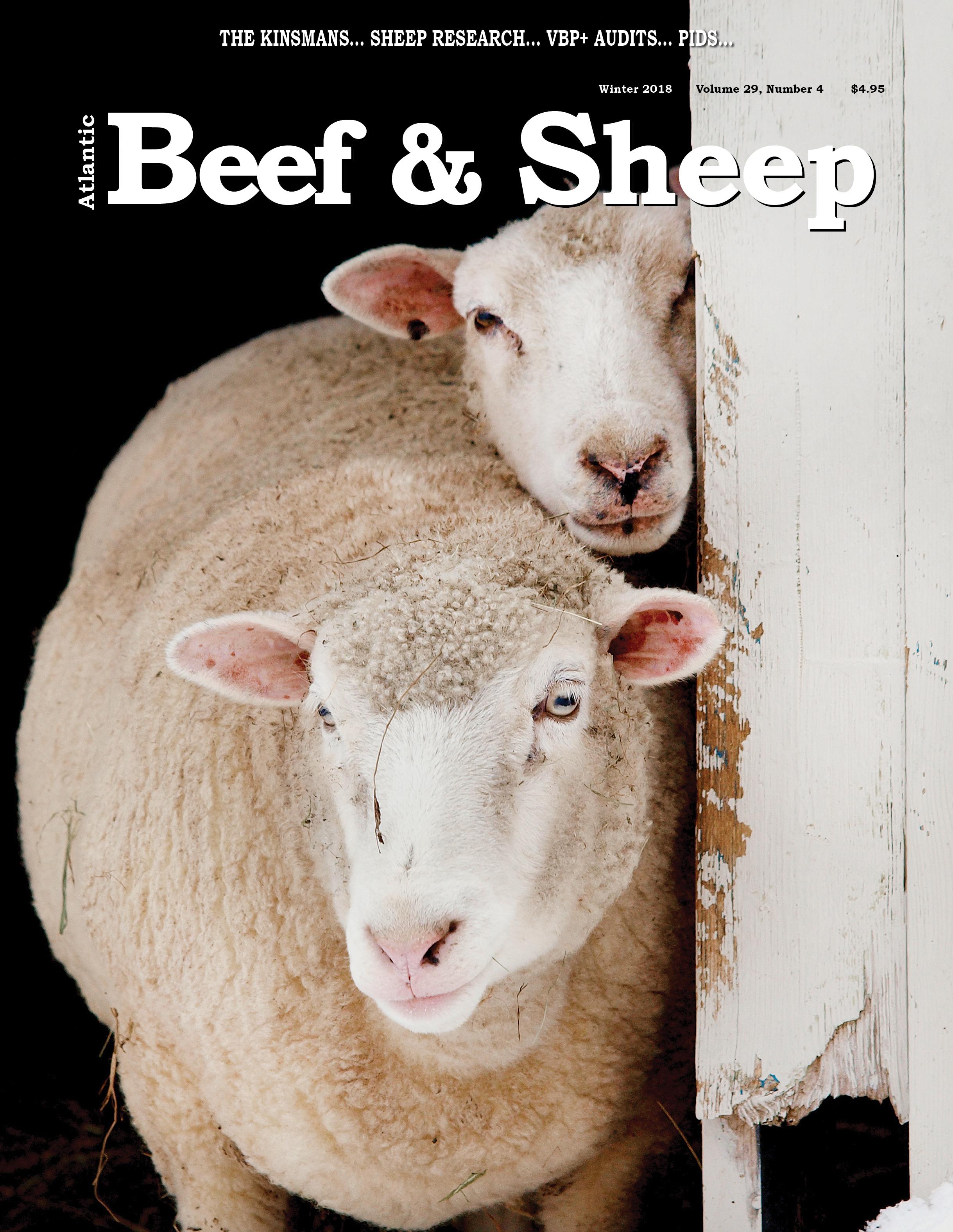 AtlanticBeef&Sheep.jpg