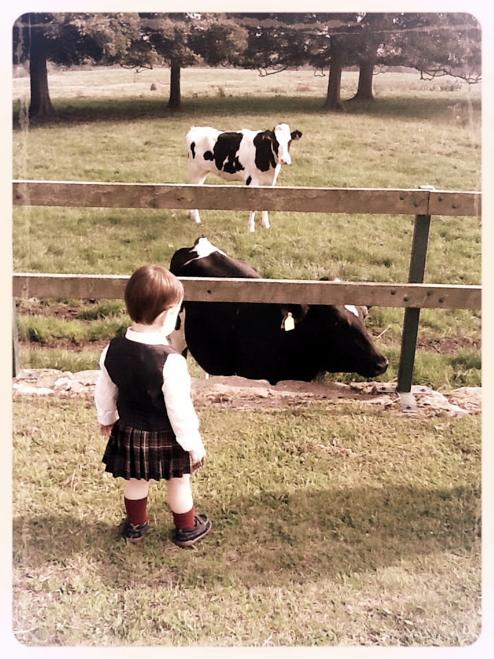 My son, outside Balgonie Castle, perhaps wondering why these neighbours had not been invited to the party!