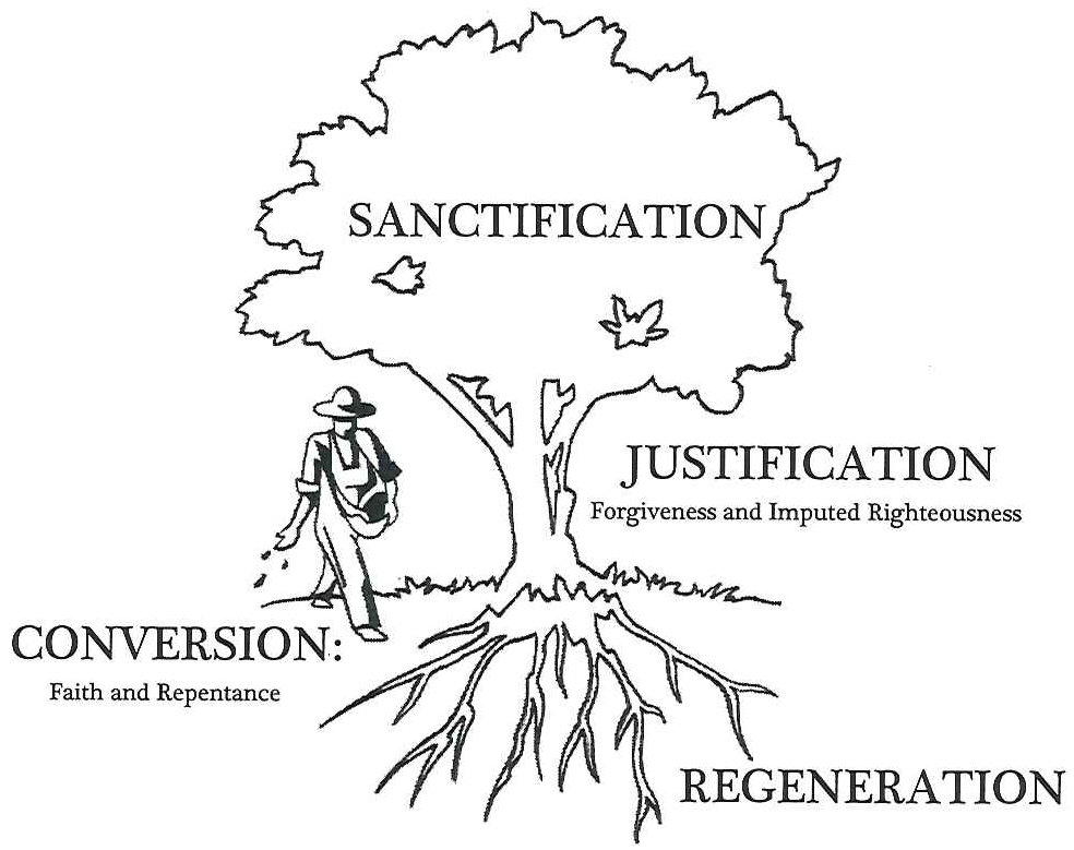 sanctification tree_page1_image1 (2).png