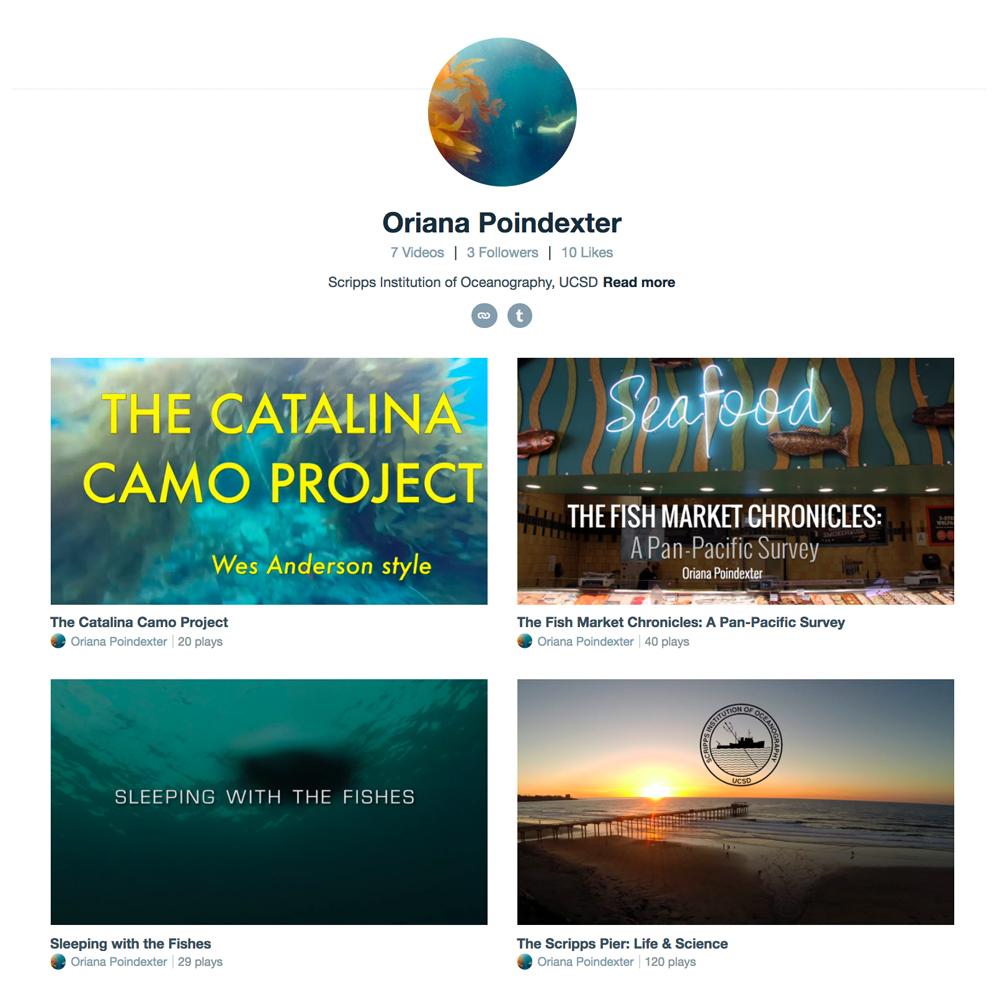 Vimeo Page