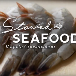 Storied Seafood: Aquarium of the Pacific
