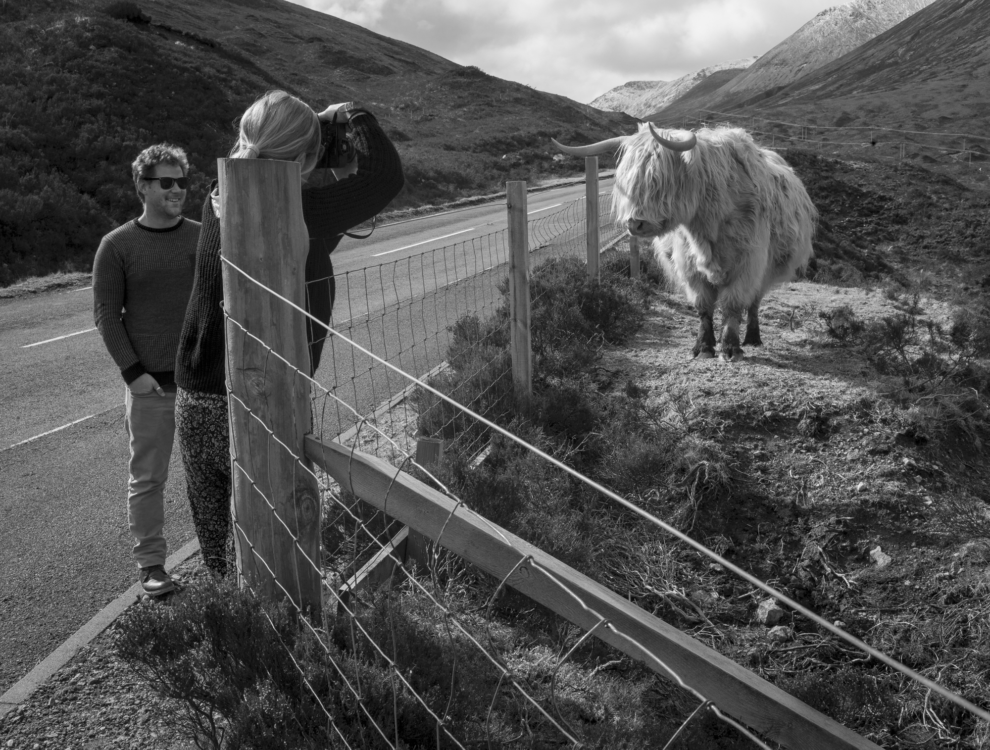"© 2015 Mark Maio - ""Posing - Isle of Skye, Scotland"""
