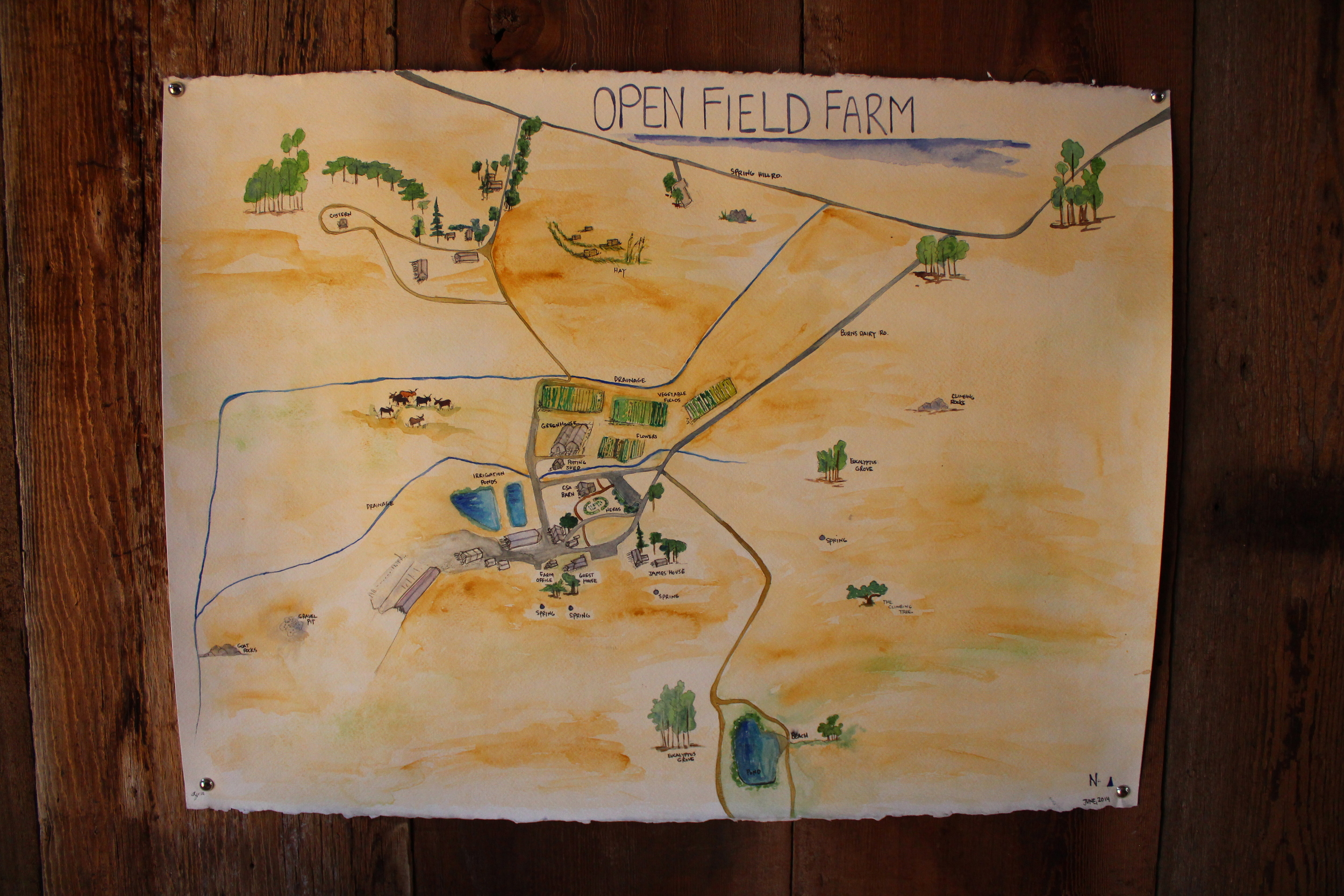 Regina's lovely watercolor map of the farm.