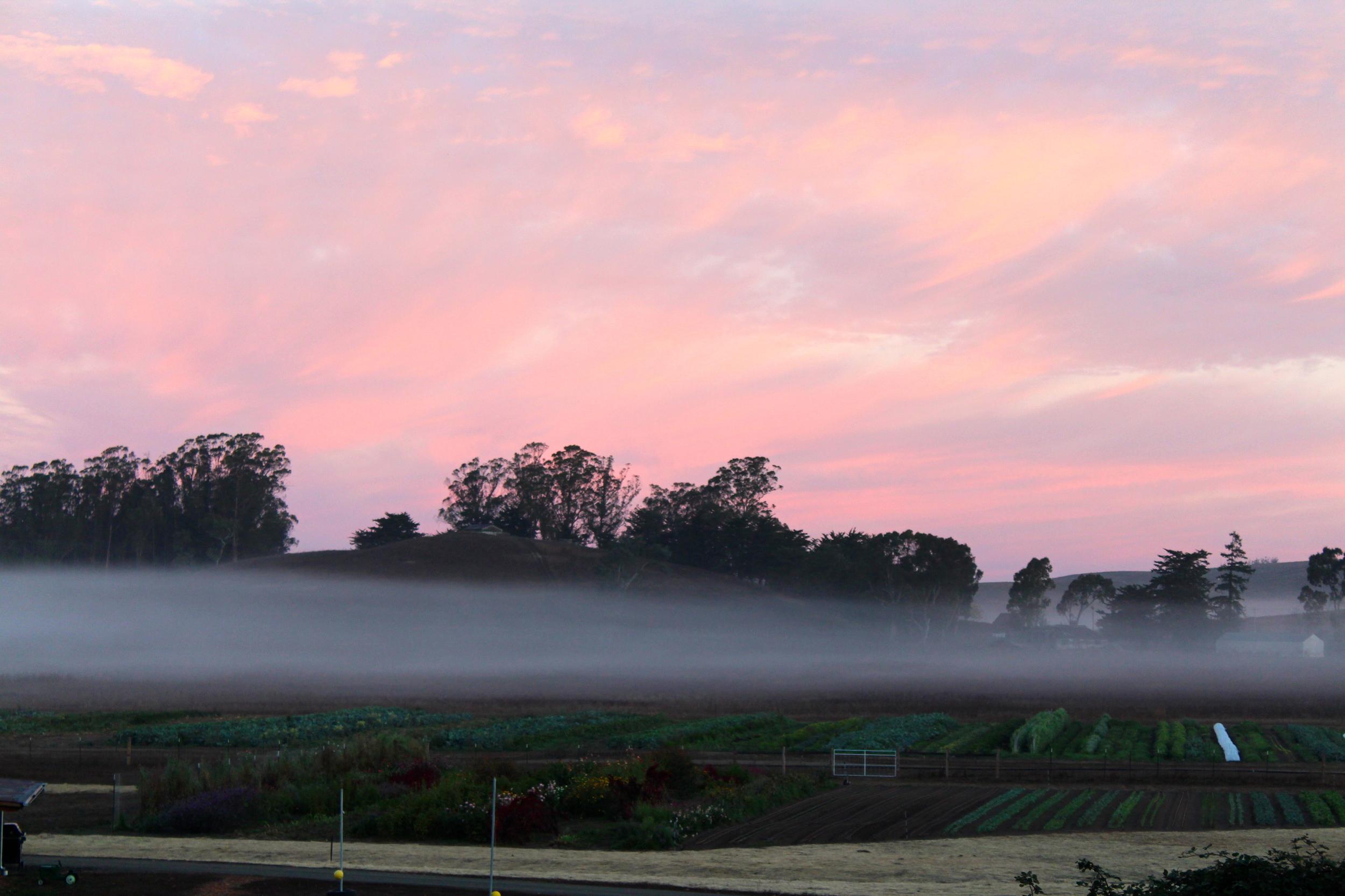 Sunrise with a fog