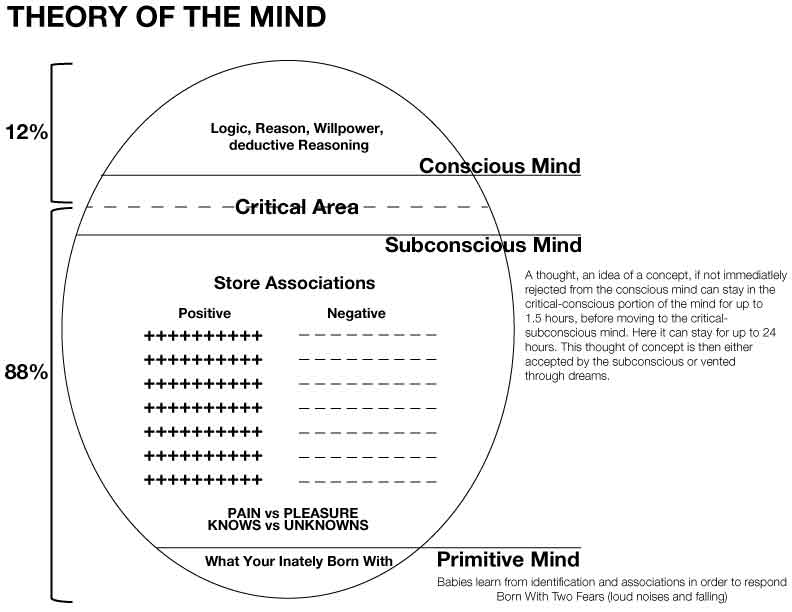 Theory of the Mind — THETA SPRING