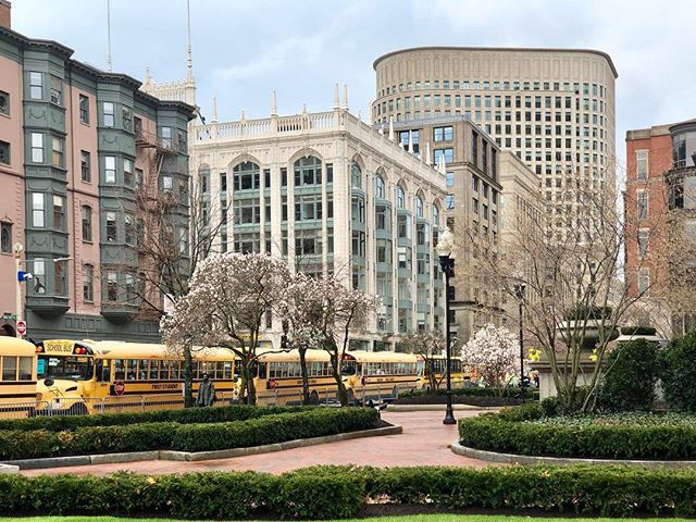 Spring #Boston #springtime #copleysquare #nacphotography #shotoniphonex #spring