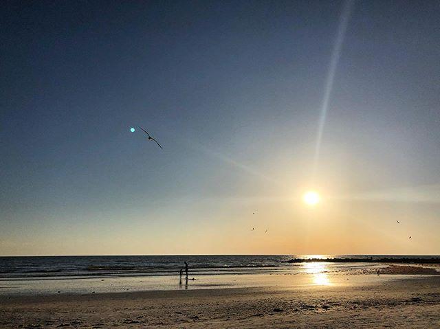 Beach day, beach sunset #honeymoonisland #dunedinflorida #florida #floridastateparks #beach #tropical #vacation #floridavacation