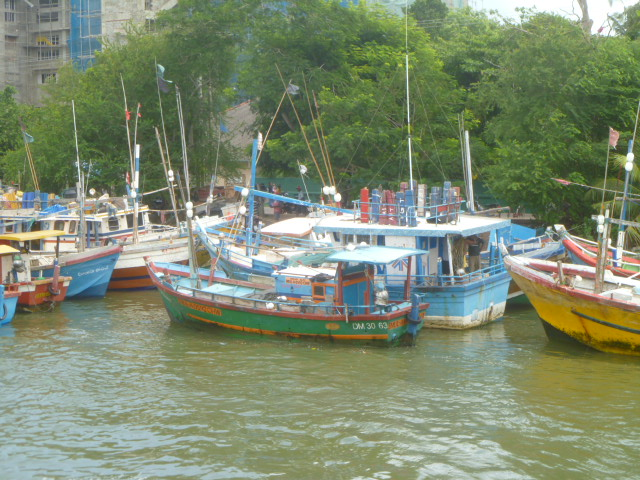 I loved how colorful all these boats were, they really stood out on this grey day.