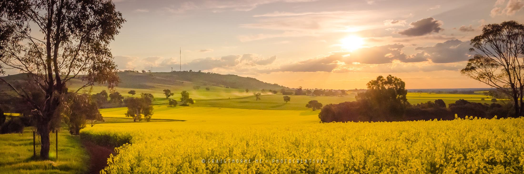 20150920-07-Panoramas-by-Craig-Thorne-THN_8331.jpg