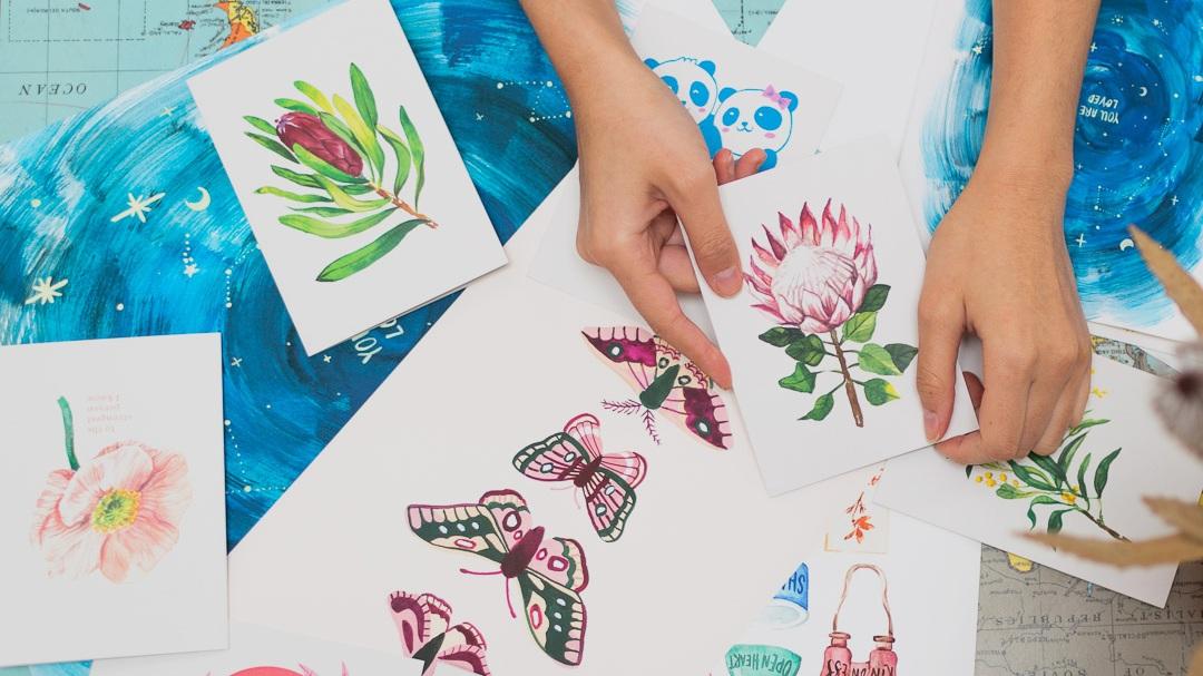 Illustrator and Designer -