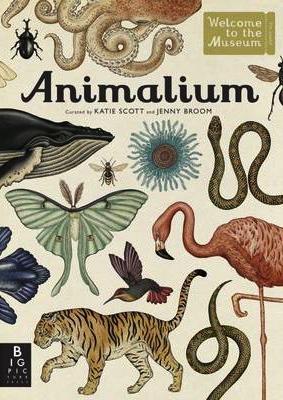 animalium 283x400.jpg