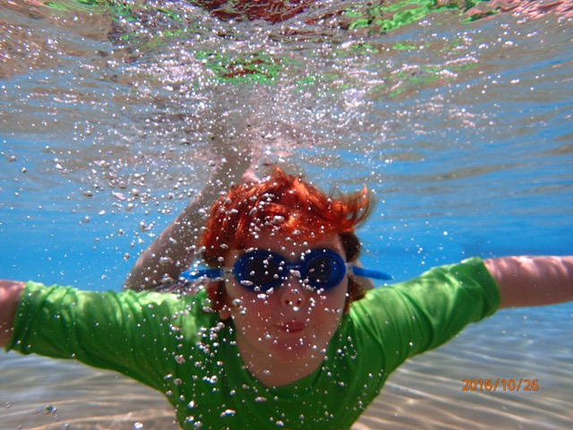 harry underwater 600x480.jpeg