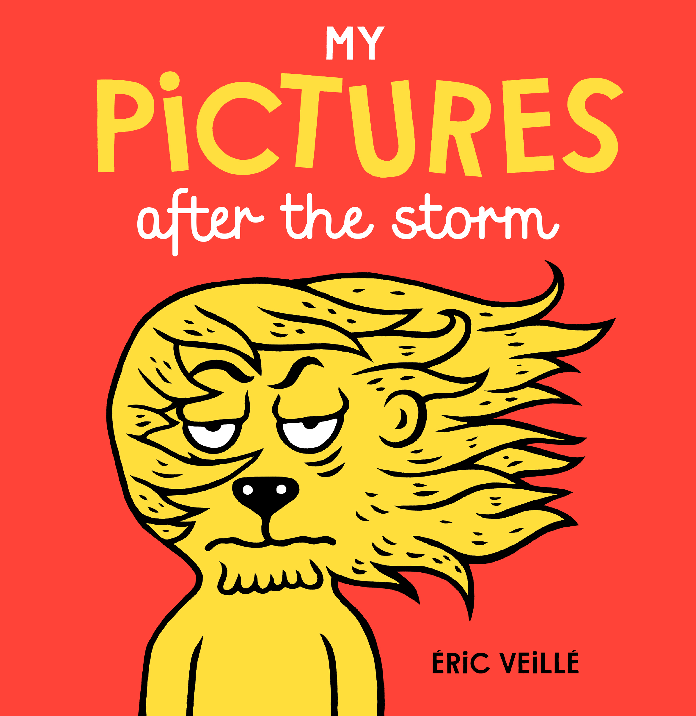 my pictures after the storm cover.JPG